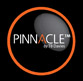 Pinnacle Ladders Logo