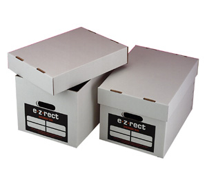 Archive Document Boxes - Pack of 25