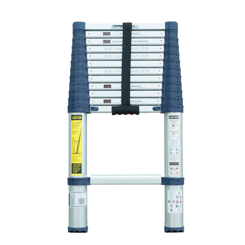 Xtend + Climb ProSeries Telescopic Ladder