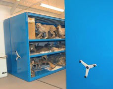 View Mobile Racking & Shelving Suitable For Museums