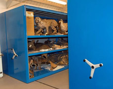 Roller Racking For Museums & Galleries